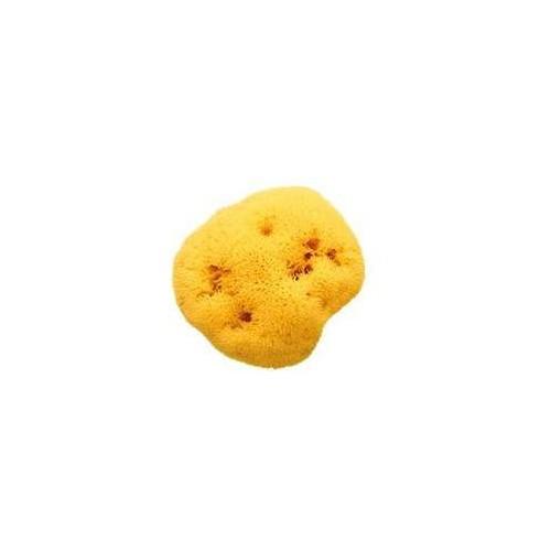 Houbička na mytí Honeycomb 14